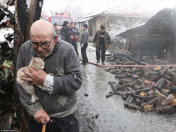 Tình bạn thiêng liêng giữa ông lão và chú mèo nhỏ: Nhà có thể cháy nhưng mèo thì không thể mất - Ảnh 1.