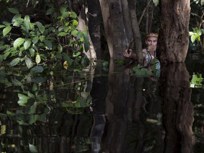 Dram Braga, chàng trai dân tộc Kambeba Indian 19 tuổi lớn lên cùng với cung tên, đây là công cụ giải trí và săn bắn của dân tộc này.