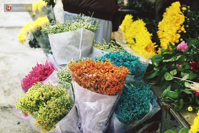 Người dân làng đào Nhật Tân: Từ giờ đến Tết mà rét thế này thì đào không nở hoa kịp mất! - Ảnh 13.