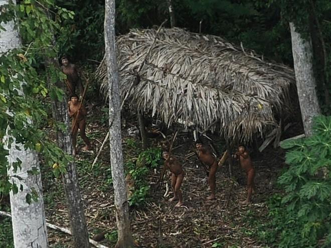 Một số bộ lạc trong rừng Amazon sống hoàn toàn cô lập, không hề liên lạc với thế giới văn minh bên ngoài. Trong ảnh là một nhóm thổ dân kinh ngạc khi thấy trực thăng bay qua gần sông Xinane (Brazil).