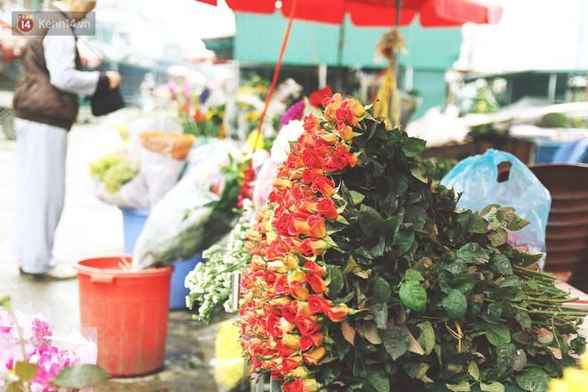Người dân làng đào Nhật Tân: Từ giờ đến Tết mà rét thế này thì đào không nở hoa kịp mất! - Ảnh 14.