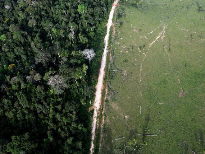 Hành động khai thác rừng ở Amazon hầu hết là phạm pháp. Trong ảnh: Một khu vực bị tàn phá gần công viên quốc gia Amazon ở Itaituba (Brazil).