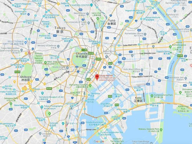 Trong chợ cá lớn nhất thế giới tại Nhật Bản: Mỗi con cá ngừ được bán với giá bằng vài ngôi nhà Nhật Bản - Ảnh 17.
