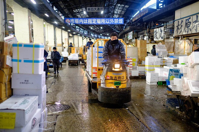 Trong chợ cá lớn nhất thế giới tại Nhật Bản: Mỗi con cá ngừ được bán với giá bằng vài ngôi nhà Nhật Bản - Ảnh 19.