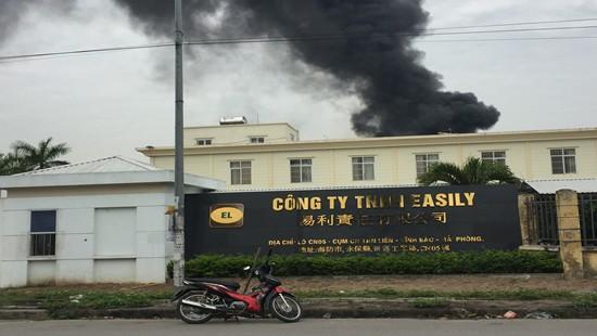 Cháy lớn tại kho nguyên liệu trong CCN Tân Liên - Ảnh 3.