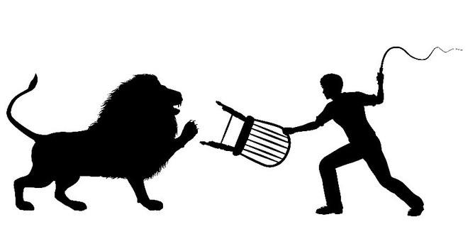 Công việc thuần hóa sư tử trong rạp xiếc được thực hiện như thế nào? - Ảnh 3.