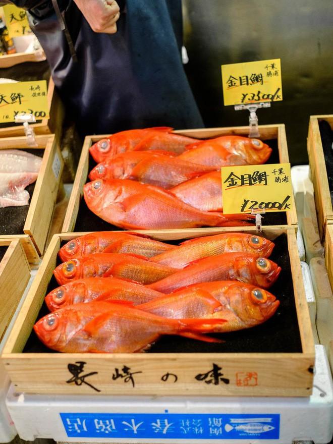 Trong chợ cá lớn nhất thế giới tại Nhật Bản: Mỗi con cá ngừ được bán với giá bằng vài ngôi nhà Nhật Bản - Ảnh 3.