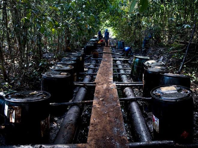 Tràn dầu cũng là một vấn nạn tại Amazon. Trong ảnh: Nhân viên của Pluspetrol đang kiểm soát thiệt hại sau một vụ tràn dầu tại Lereto (Peru).