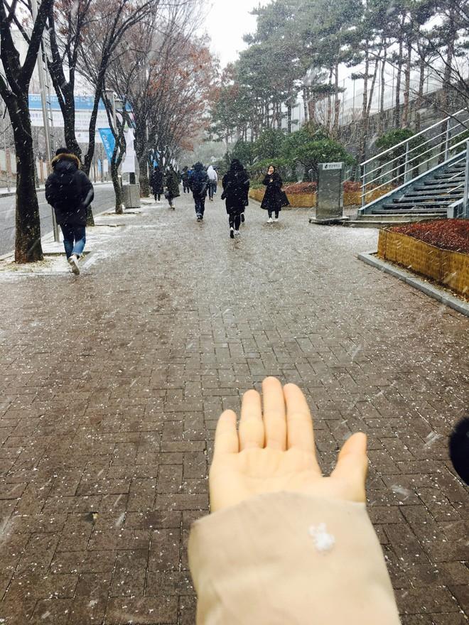 """Đi du học vì mê Running Man, cô bạn """"gục ngã"""" trên đất Hàn vì làm thêm quá cực - Ảnh 4."""