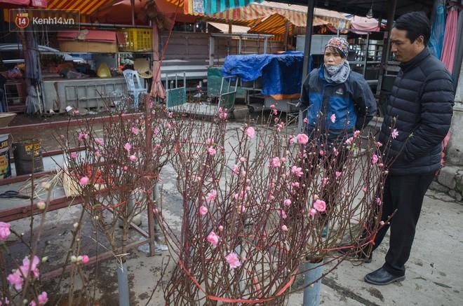 Người dân làng đào Nhật Tân: Từ giờ đến Tết mà rét thế này thì đào không nở hoa kịp mất! - Ảnh 7.