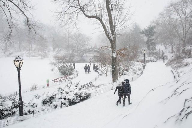 New York như hành tinh khác trong trận bão tuyết khiến nước Mỹ lạnh hơn sao Hỏa - Ảnh 8.