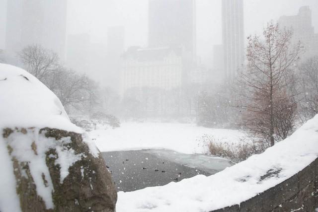 New York như hành tinh khác trong trận bão tuyết khiến nước Mỹ lạnh hơn sao Hỏa - Ảnh 9.