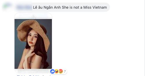 Lê Âu Ngân Anh và chuyện có 1-0-2 tại Hoa hậu Liên lục địa 2018: Bị fan Việt vào fanpage quốc tế tố thi chui - Ảnh 3.