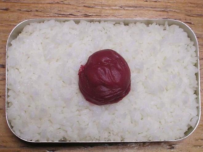 Hướng dẫn nhập môn cho tín đồ văn hóa Nhật: Cách phân biệt các loại bento - Ảnh 5.