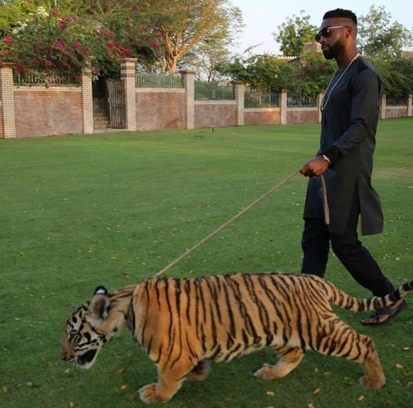 Mua sắm hàng hiệu, nuôi hổ, lái xe sang: Đây chính là cuộc sống xa xỉ hàng ngày của con nhà giàu Dubai - Ảnh 1.