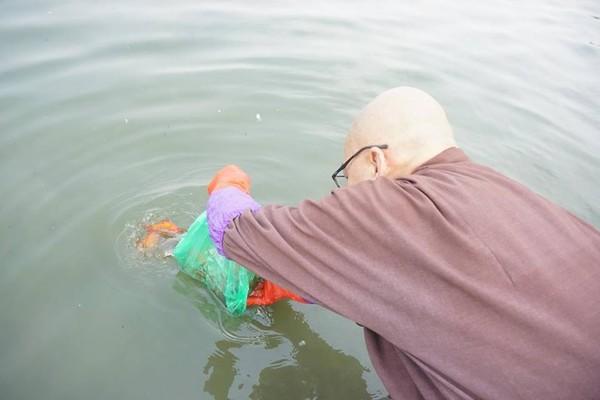 Chưa kịp về chầu trời ngày ông Công ông Táo, nhiều cá chép lăn ra chết vì người dân thả quá nhiều bụi tro xuống hồ - Ảnh 4.