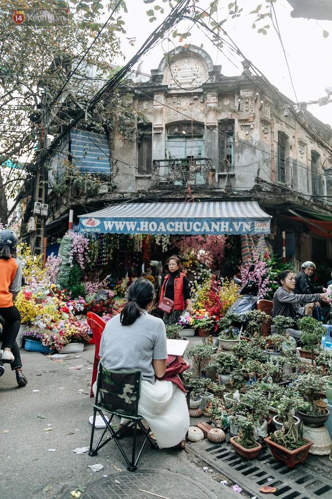 Rộn ràng không khí Tết tại chợ hoa Hàng Lược - phiên chợ truyền thống lâu đời nhất ở Hà Nội - Ảnh 13.