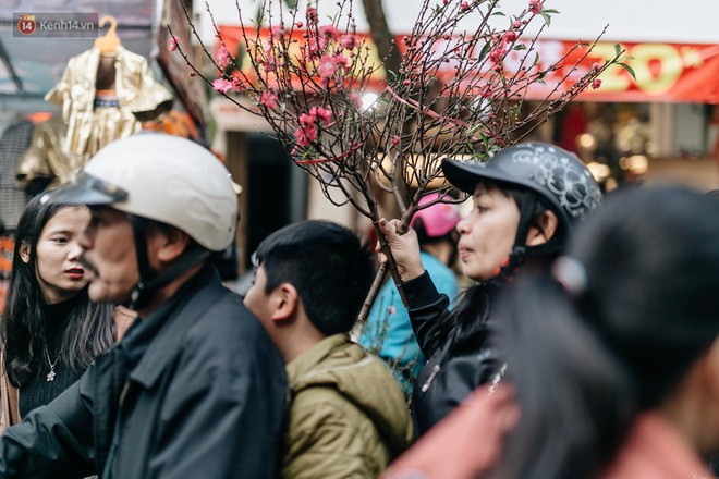 Rộn ràng không khí Tết tại chợ hoa Hàng Lược - phiên chợ truyền thống lâu đời nhất ở Hà Nội - Ảnh 6.
