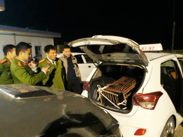 Kiểm tra chiếc xe taxi, công an phát hiện 1 con gấu khủng trốn sau cốp xe - Ảnh 1.