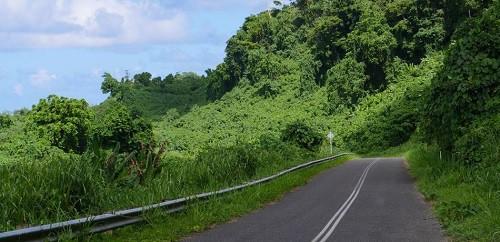 Tài xế xe tải Agus Tri Pamungkas may mắn thoát nạn sau khi lao xuống vách đá vì đi theo đường mà Google Maps chỉ dẫn. Ảnh minh hoạ: Getty