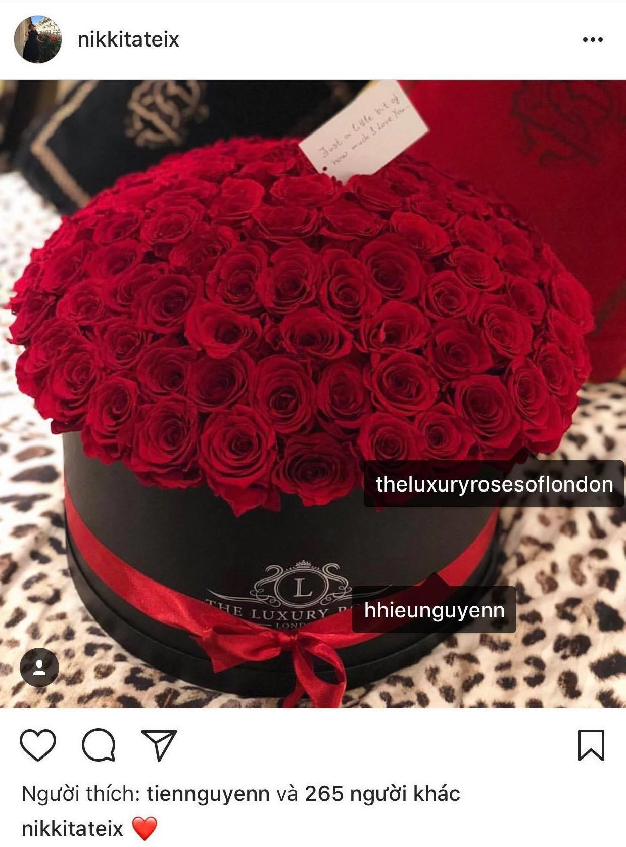 Cô gái Tây bất ngờ xoá ảnh và bỏ follow thiếu gia em chồng Hà Tăng trên Instagram, rộ nghi án đã chia tay - Ảnh 3.
