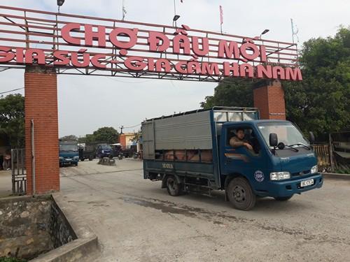 """""""Đệ nhất chợ lợn ở Hà Nam - Ảnh 1."""