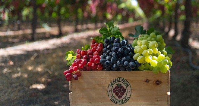 Điểm danh 4 loại trái cây gây nên bao sóng gió trong thần thoại Hy Lạp - Ảnh 9.