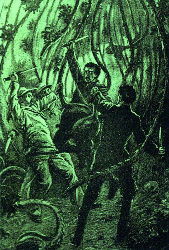 Cây ăn thịt người - truyền thuyết từ thần thoại cho tới đời thực - Ảnh 4.