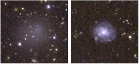 Thiên hà ma là hóa thạch sống từ bình minh vũ trụ - Ảnh 1.