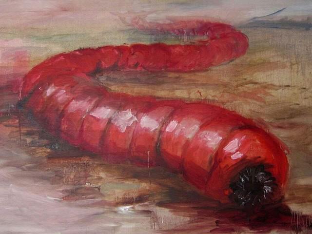 Sâu tử thần: Quái vật sa mạc trong thần thoại Mông Cổ - Ảnh 1.