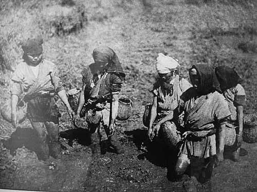 Phong trào Xô Viết Nghệ Tĩnh - Cuộc tập dượt cho cách mạng tháng 8 sau này - Ảnh 1.