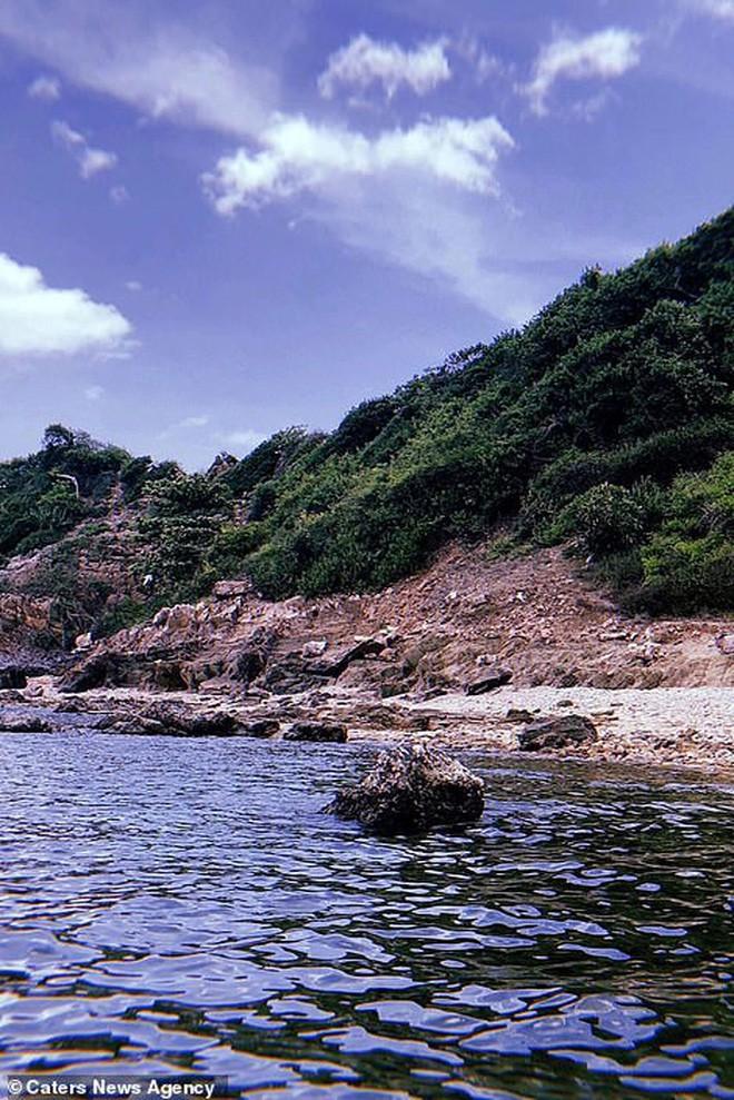Cú lừa: Nhóm khách Tây 18 người mua vé lặn biển rồi bị bỏ rơi trên hoang đảo toàn rắn ở Thái Lan - Ảnh 4.