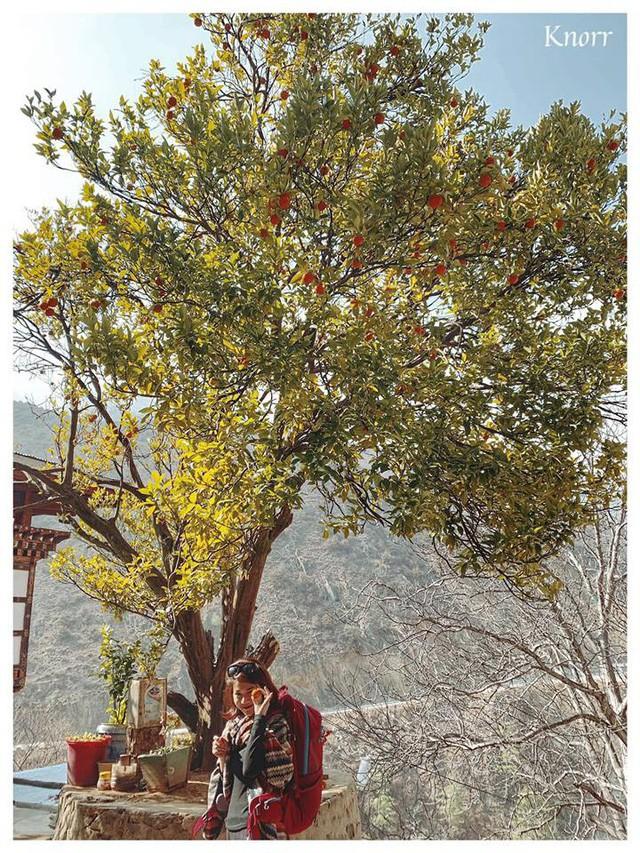 Khám phá đất nước hạnh phúc nhất thế giới: Muốn biết bình yên trông như thế nào thì hãy đến Bhutan! - Ảnh 14.