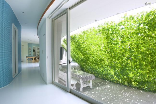 Ngôi nhà vườn hình thuyền độc đáo với điểm nhấn từ giàn cây leo xanh tươi mát mắt ở Nhật Bản - Ảnh 2.