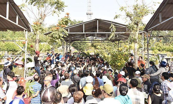 Phẫn nộ hình ảnh leo cây, đu cột livestream lễ tang Anh Vũ - Ảnh 10.