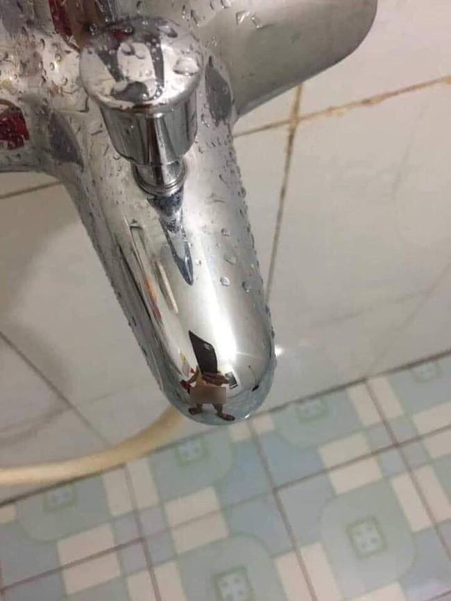 Chồng bảo đi sửa ống nước còn nhiệt tình chụp ảnh làm bằng chứng, nhưng vợ nổ đom đóm mắt khi thấy cảnh tượng này - Ảnh 2.