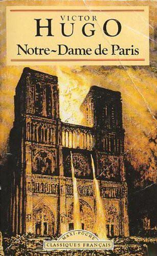Napoléon, Victor Hugo đã cứu Nhà thờ Đức Bà như thế nào? - ảnh 3