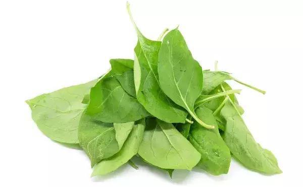 Đông y khen cây dại này tốt từ gốc đến ngọn: Lá, quả, rễ đều có thể nấu thành món ăn thuốc - Ảnh 2.