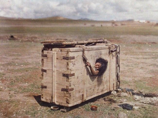 Người phụ nữ bị nhốt trong cũi giữa sa mạc đến chết vì đói khát và câu chuyện đầy ám ảnh sau bức ảnh khiến cả thế giới rùng mình - Ảnh 1.