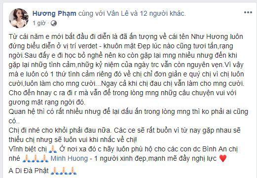Sao Việt xót xa, đau đớn trước thông tin người mẫu Như Hương qua đời ở tuổi 37 vì ung thư - Ảnh 3.