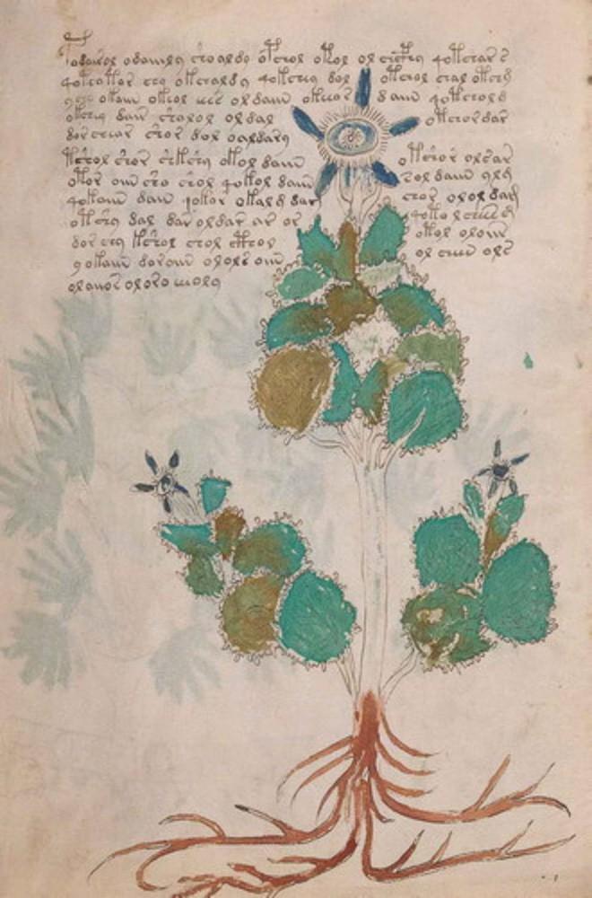 Cuốn sách bí ẩn nhất lịch sử đã hành hạ nhân loại suốt 600 năm, cuối cùng được giải mã trong... 2 tuần - Ảnh 4.