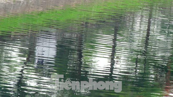 Sau 4 ngày thử nghiệm bảo bối của Nhật, sông Tô Lịch đã bớt mùi - Ảnh 11.