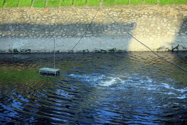 Sông Tô Lịch ra sao sau 3 ngày áp dụng công nghệ thần kỳ từ Nhật Bản? - Ảnh 1.