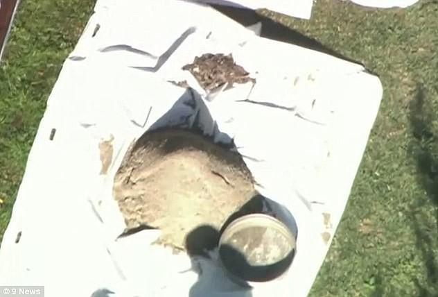 Đào đất xây dựng bể bơi, nhóm công nhân vô tình phát hiện ra một sự thật đáng sợ - Ảnh 3.
