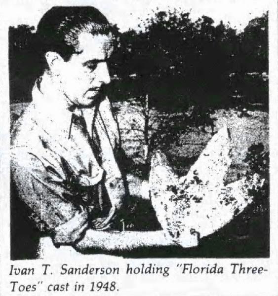 Ivan Sanderson cầm mẫu chân chim được đúc từ vết chân trên mặt đất.