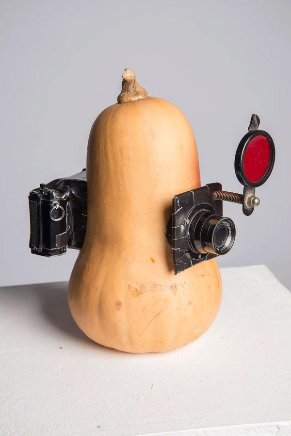 Những bức ảnh tuyệt vời được chụp bằng camera làm từ chất liệu bánh mì - Ảnh 17.