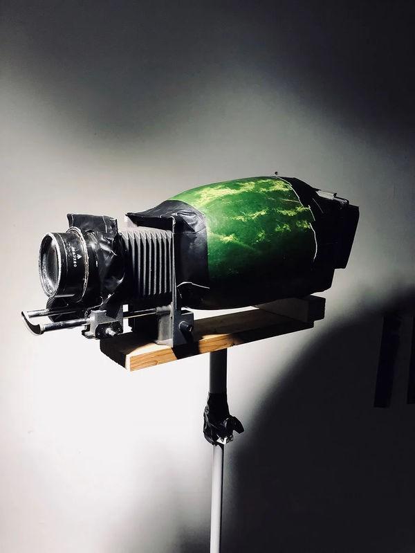 Những bức ảnh tuyệt vời được chụp bằng camera làm từ chất liệu bánh mì - Ảnh 22.