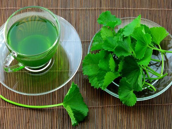 Rau mùi tây và những lợi ích tuyệt vời đối với thận mà bạn chưa hề biết - Ảnh 3.