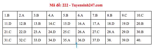 Gợi ý đáp án thi môn Vật lý THPT Quốc gia 2019 tất cả các mã đề - Ảnh 7.