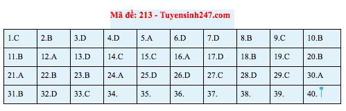 Gợi ý đáp án thi môn Vật lý THPT Quốc gia 2019 tất cả các mã đề - Ảnh 6.